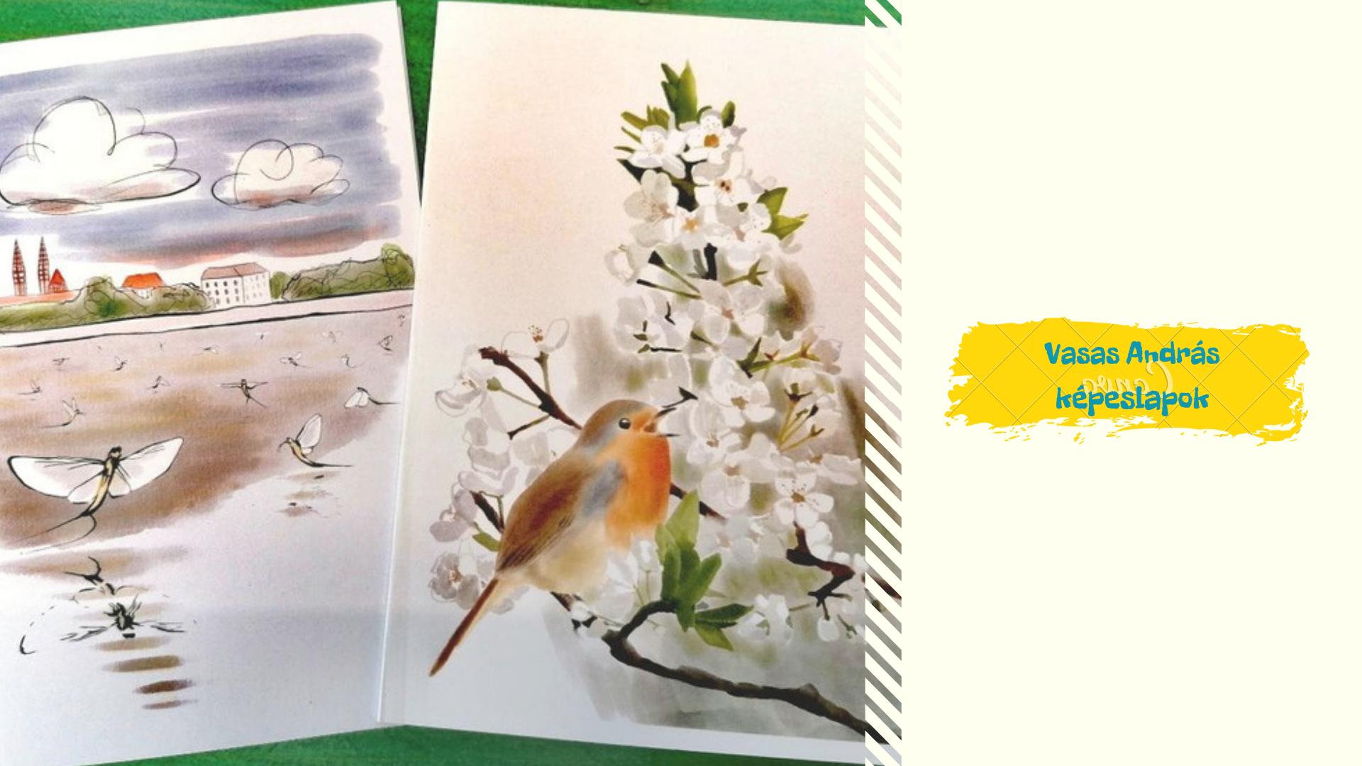 Vasas András képeslapok